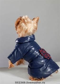 Выкройки зимней одежды для собак своими руками