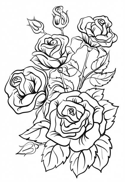 Рисунок розы фото