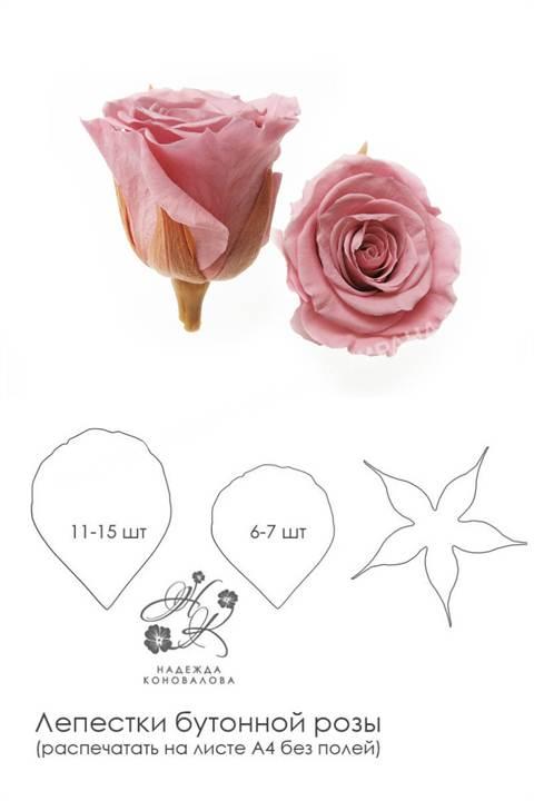 Как сделать розу из фоамирана выкройки фото 806