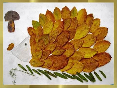 Как сделать ёжика из листьев фото 786