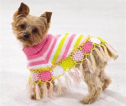 вязаная одежда для собак своими руками выкройки с фото и видео